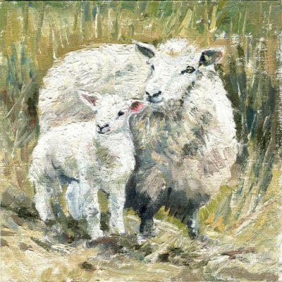 Schaf mit Lamm, Öl auf Malpappe, 15 × 15 cm