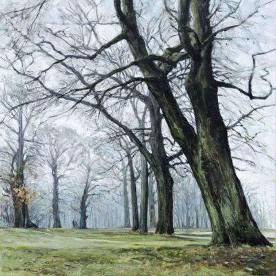 Himmelswurzeln, Jenischpark, Öl auf Leinwand, 70 x 70 cm, 2020